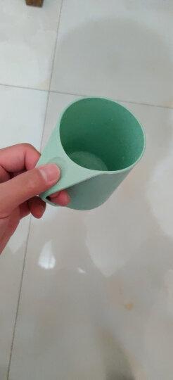 欣沁 旅行洗漱杯 创意小麦牙缸套装刷牙杯 情侣塑料漱口杯子 北欧绿 晒单图