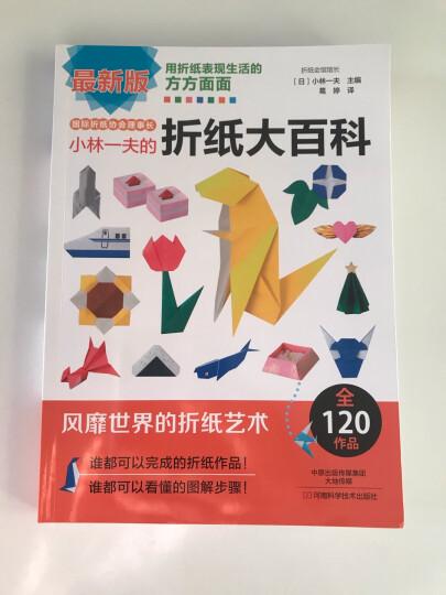 玩转组合折纸:七彩花球 晒单图
