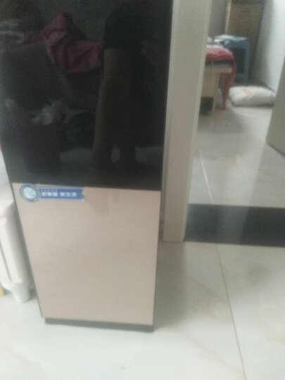美菱(MeiLing) 饮水机立式家用温热型/冷热型 L205冷热型 晒单图