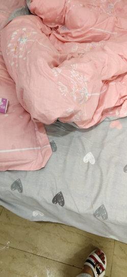 南极人四件套纯棉床上用品全棉床品套件1.8m床单被套三件套 【上新款】爱如花开-粉 晒单图