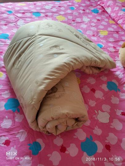 爱斯基摩人家纺被子厚冬被 加厚驼毛被子芯 保暖绒冬被春秋棉被芯 双人单人被子棉花被 单人 180*220cm(秋冬厚款约6.5斤) 晒单图