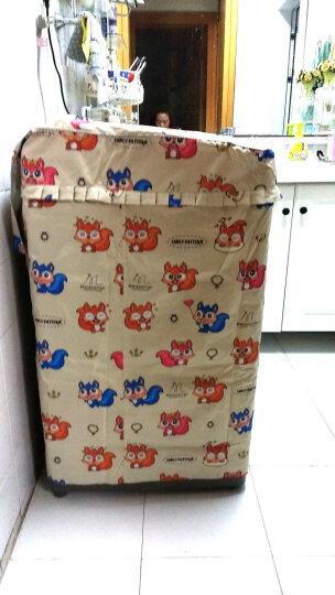 安美饰 全自动波轮洗衣机罩套 XB552L 波轮洗衣机防水防晒防尘罩 做工精致细密/面料/拉链新升级 L号 松鼠 晒单图