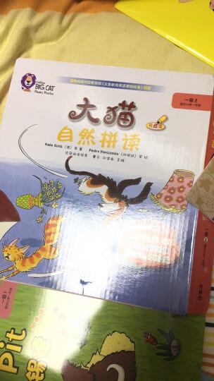 大猫自然拼读二级1 Big Cat Phonics(适合小学二年级 读物5册+阅读指导1册+拼读卡片1套+MP3光盘1张 点读版) 晒单图