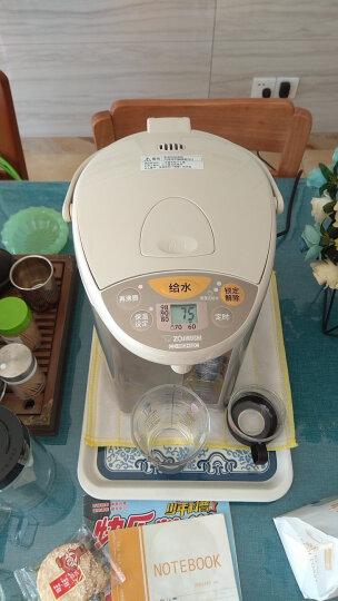象印(ZO JIRUSHI)电热水瓶家用 四段保温电热水壶 微电脑多功能可定时 CD-WBH40C 4L电水壶 粉棕色 晒单图