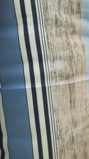 艾薇 枕芯家纺 单人纤维枕头 学生护颈枕头 配全棉枕套 米罗 38*60cm 晒单图