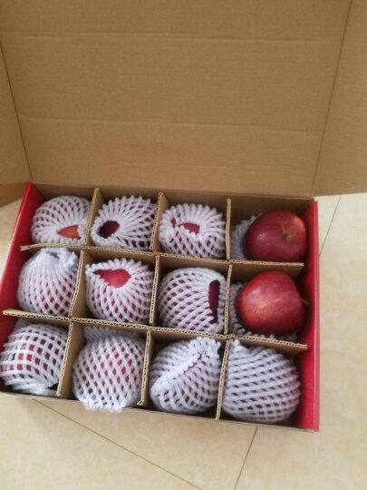 潘苹果 甘肃天水红富士苹果 9个 一级铂金果 2kg 单果210g-230g  新鲜水果 晒单图
