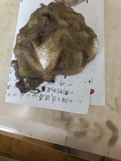 藤井[2件8折 3免1]染发膏染发剂一梳黑洗梳子魔法植物泡泡沫天然日本进口技术染发梳一洗纯黑栗棕色 二梳加八组(自然黑) 晒单图