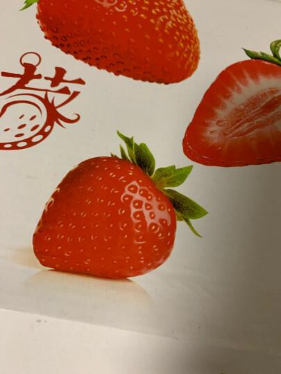 红颜奶油草莓 约重500g/20-24颗 新鲜水果 晒单图