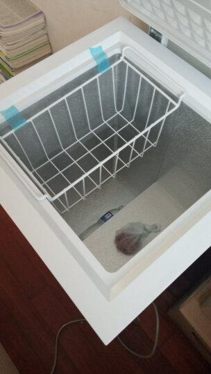 星星(XINGX) 90升 家用小冰柜 冷藏冷冻转换小型迷你冷柜 单温母婴母乳冰箱 BD/BC-90E 晒单图