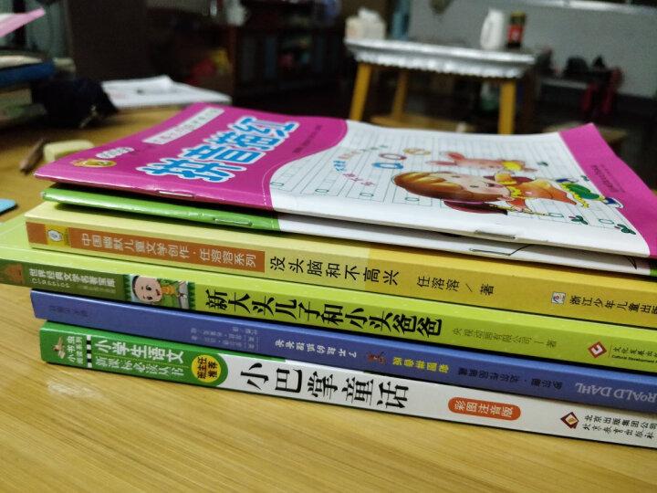 学前教育必备描红系列(套装共8册) 晒单图