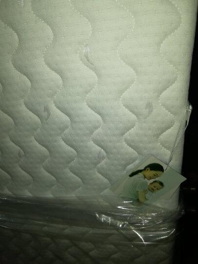 史威比(Sweeby) 婴儿床垫天然椰棕床垫3E椰梦维宝宝床垫可拆洗透气儿童棕榈垫床垫 咖啡色-牛津布布套(120*60) 天然椰棕丝 晒单图