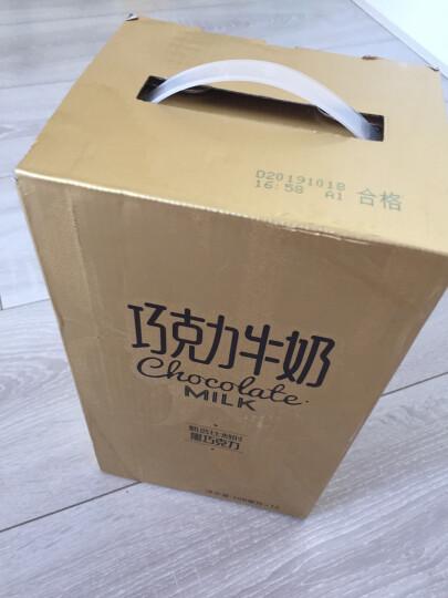 新希望 巧克力牛奶200ml*12盒 礼盒装(乳制品非饮料) 晒单图