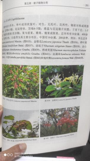 植物分类学 晒单图