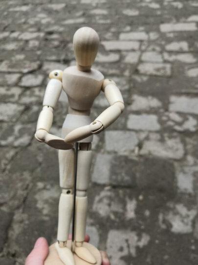 凡高 木头人模型  实木漫画木偶人  木头人关节可调动人偶 可调动木人偶 素描模特摆设 木头人20cm 晒单图