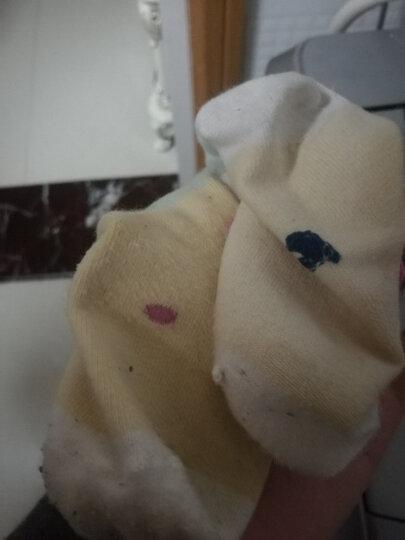 象宝宝(elepbaby)婴儿袜子6双装彩棉条纹宝宝袜四季款 新生儿棉袜 10-12CM(6-12个月) 晒单图