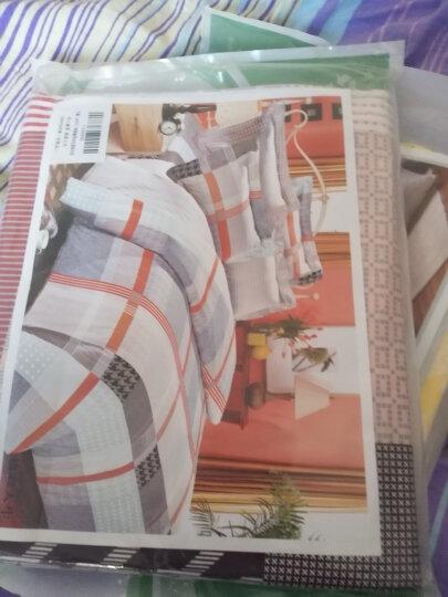 艾薇 床垫套保护罩双人加大40支纯棉斜纹防滑床笠1.8米床 美丽心情 180*200cm 晒单图