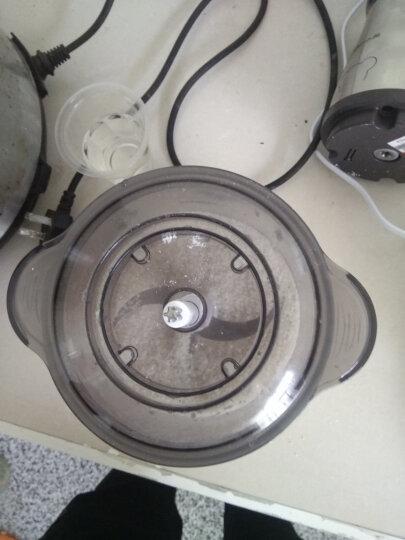 小熊(Bear)绞肉机家用电动不锈钢多能料理机绞馅机双刀碎肉打肉机切菜搅拌机QSJ-B03E1 2L 晒单图