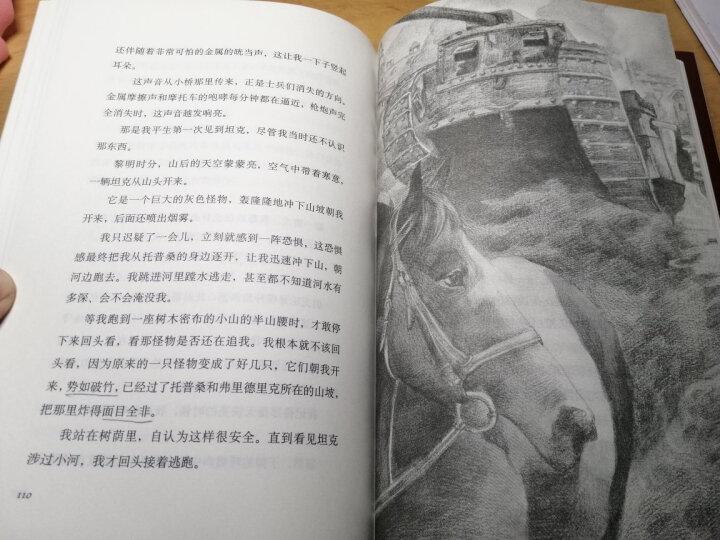 战马(2015版)(5-6年级假期阅读书目)(爱心树童书) 晒单图