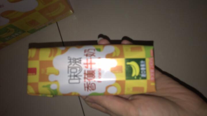 伊利 味可滋香蕉牛奶240ml*12盒/箱(礼盒装) 晒单图