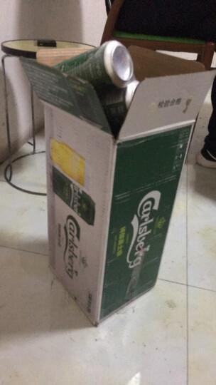 嘉士伯(Carlsberg)啤酒 特醇啤酒330ml*24听 整箱装 清爽口感 晒单图