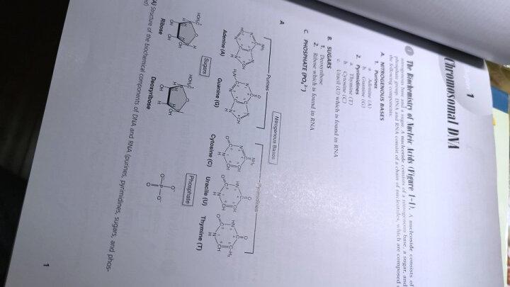 美国医师执照考试丛书:High-Yield 细胞与分子生物学(第3版) 晒单图