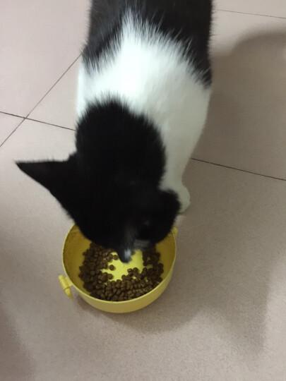 伟嘉 宠物猫粮 成猫全价粮 布偶蓝猫橘猫加菲英短猫咪 鸡肉口味 1.3kg 晒单图