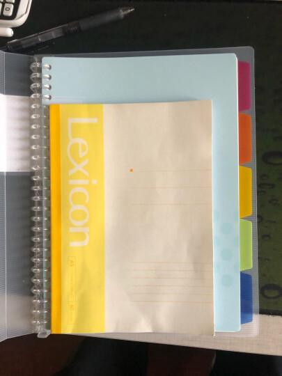 日本国誉(KOKUYO)淡彩曲奇20孔活页本笔记本记事本子活页夹日记本5色索引分隔页A5/40页蓝色WSG-RUCP12B 晒单图