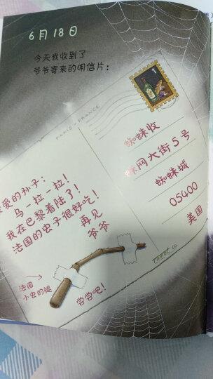 苍蝇的日记 晒单图