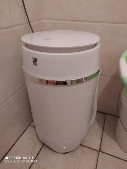 小鸭 3.5公斤半自动单筒迷你小洗衣机 蓝光款 不锈钢沥水篮 晒单图
