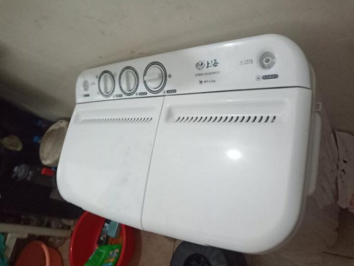 上海(shanghai) 8公斤全半自动洗衣机 双缸双桶波轮洗衣机大容量 家电 家用小型洗脱两用  8公斤 家用租房款(洗1-4人) 晒单图