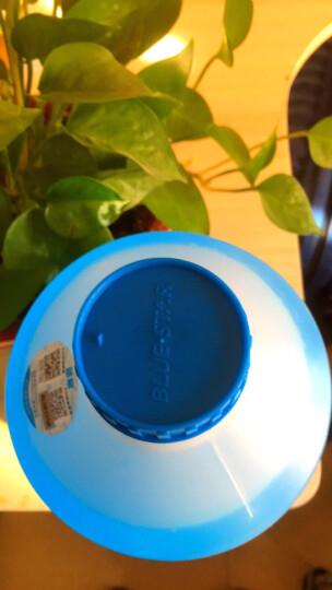 蓝星(BLUESTAR)汽车用品玻璃水挡风玻璃清洗剂清洗液去污剂高效去油膜雨刮精防冻除霜玻璃水四季通用  2L 晒单图