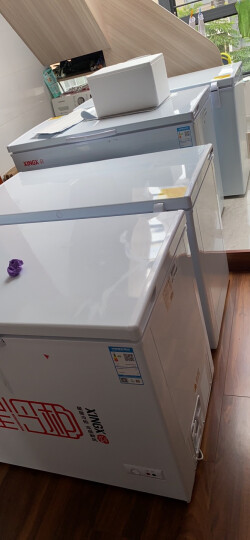 星星(XINGX) 305升 商用卧式冰柜 单温单箱冰箱 冷藏冷冻转换冷柜 安全门锁 顶开门 BD/BC-305E 晒单图