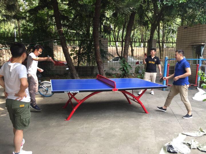 双云 乒乓球桌 室外折叠家用乒乓球台 兵浜球桌 SMC户外兵乓球台案子兵兵 SMC室外标准球桌 晒单图