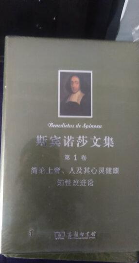 斯宾诺莎书文集(第3卷):神学政治论 晒单图