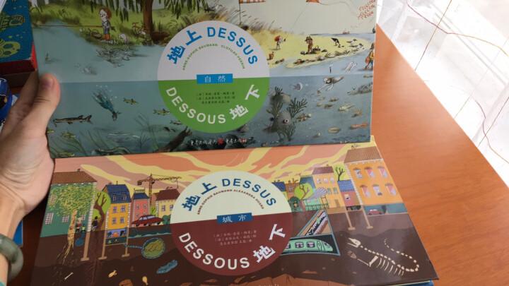 趣味科普翻翻书:地上地下 自然+城市(精装共2册) 晒单图