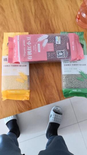 天地粮人 精品 绿豆 330g(可发豆芽 打豆浆 东北 粗粮杂粮 大米伴侣) 晒单图