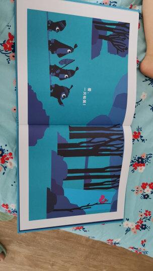 国际绘本大师罗伯特·英潘:有生之年:用优美的语言讲述生命的开始与结束(启发童书馆出品) 晒单图