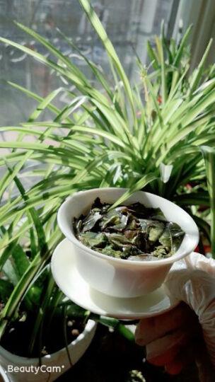 立远 茶叶 安溪铁观音茶叶清香型 茶叶礼盒 乌龙茶礼盒装 正宗秋茶  4罐504g 晒单图
