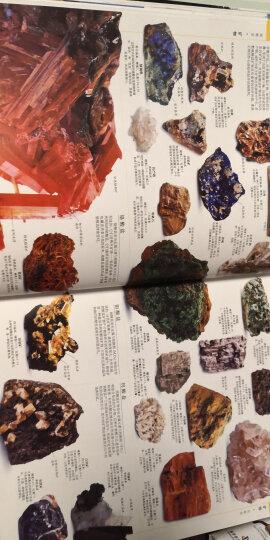 科学家带我去探索丛书 解密绿色档案 植物分类学家带我去探索 晒单图