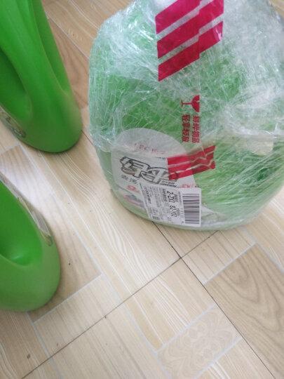 绿伞洗衣液4kg 玉兰幽香 深层去污清洁 中性机洗手洗洗衣液 晒单图