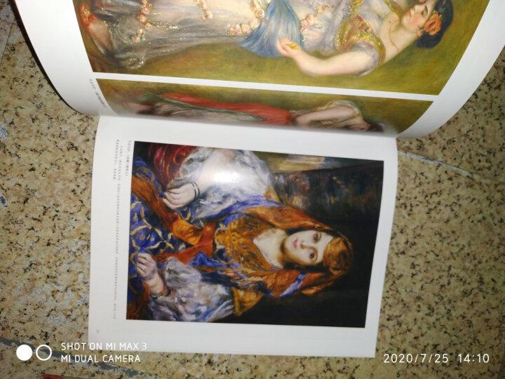 正版包邮 西方绘画大师原作 雷诺阿 高清临本 人物风景画素描速写临摹素材 油画人物色彩色粉笔素材大图 晒单图