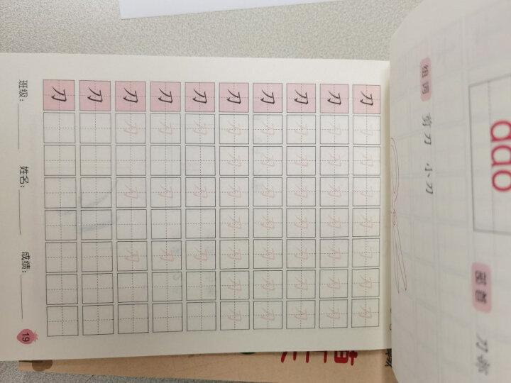 幼儿基础描红系列:数字描红本(0~10) 晒单图