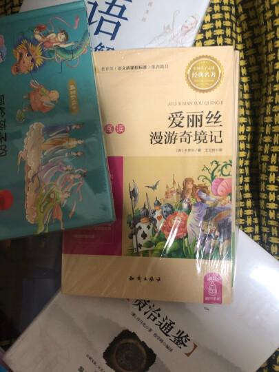 新课标必读 绿山墙的安妮+小鹿斑比+汤姆叔叔+小王子+环游地球八十天(套装共5册) 晒单图