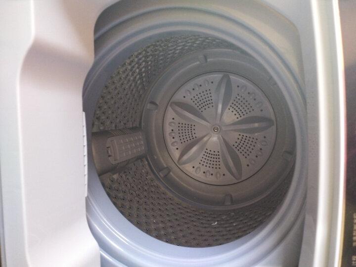 志高(CHIGO)全自动洗衣机 洗烘一体 小型家用大容量宿舍租房波轮 带风干热烘干可预约全自动洗鞋机 【8.2公斤宝石灰】蓝光洗护+风干洁桶+强电机 晒单图