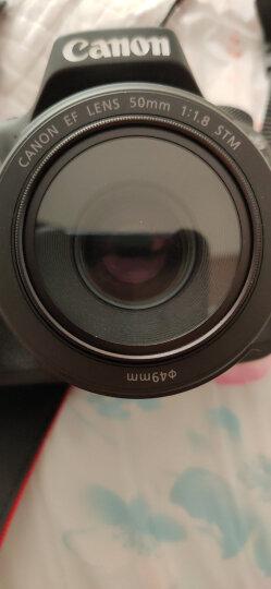 佳能(Canon)EF 40mm f/2.8 STM 单反镜头 标准定焦镜头 晒单图