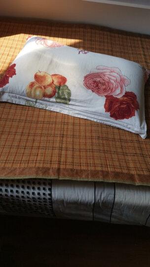 睡眠博士(AiSleep)枕芯 磁石款决明子荞麦枕芯 草本纤维枕 舒睡酒店枕头 晒单图