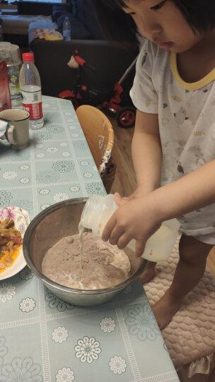 展艺冰淇淋粉  手工自制家用软硬雪糕粉 冰棒圣代冰棍原料甜筒材料 芒果味 100g 晒单图