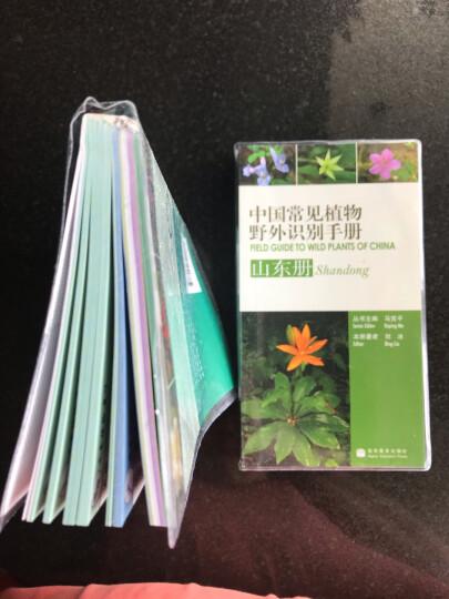 中国常见植物野外识别手册:古田山册 晒单图