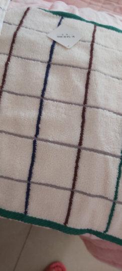金号毛巾家纺 纯棉无捻吸水方巾 小熊卡通款式 兰/粉 2条装 35*34cm 44g/条 晒单图