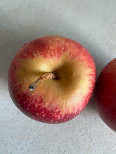 新西兰有机Diva苹果一级大果4粒装 单果重180-220g 生鲜苹果水果 晒单图